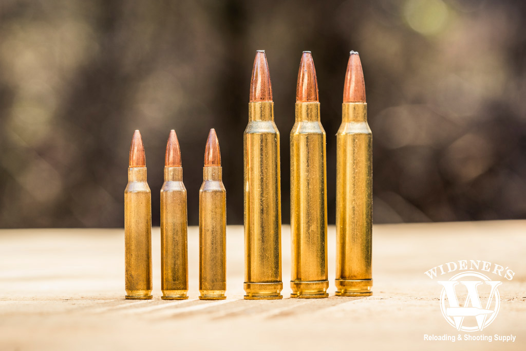 photo of 223 Rem cartridge compared to the 300 Win Mag