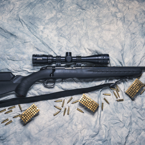 photo of a ruger 17 hmr rifle with ammo