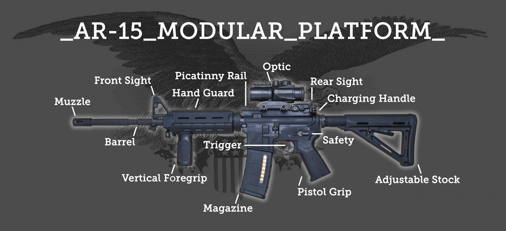 a photo of the modular ar15 rifle system