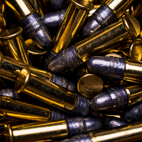 photo of 22 LR bullets