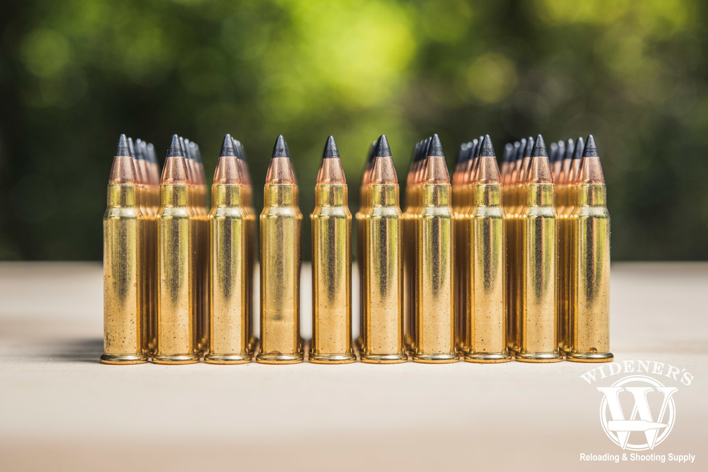 photo of rimfire ammo outdoors
