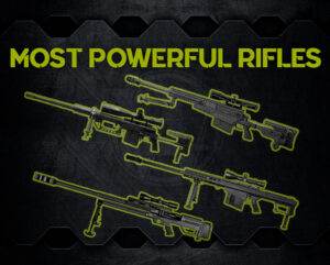 a graphic of the world's most powerful rifles