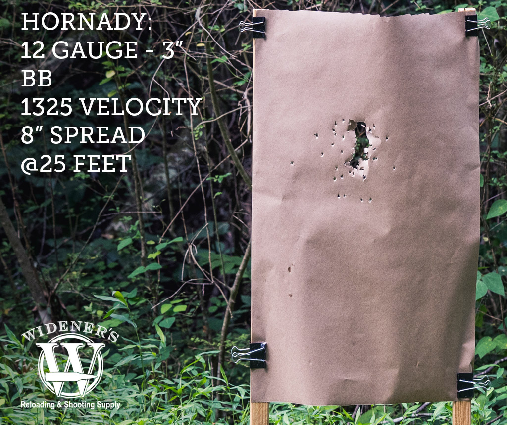 photo of 12-gauge ammo shot patterns shot with BB load