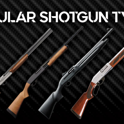 a photo of popular shotgun types