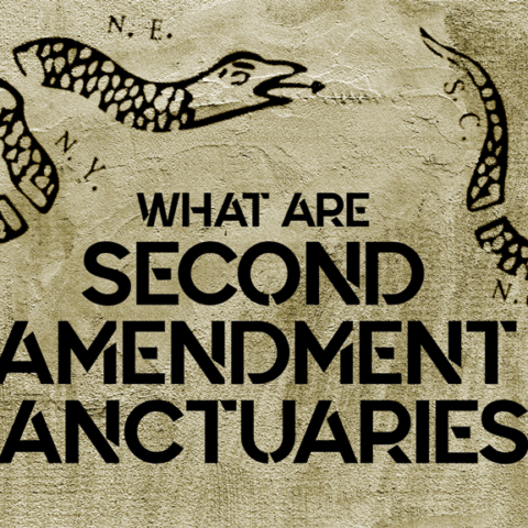 a design for the article second amendment sanctuaries
